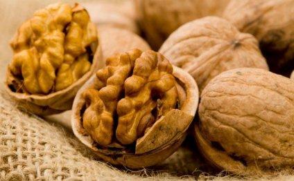 Грецкие орехи — польза и вред для мужчин