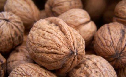 Как чистить кедровые орехи в домашних условиях - разные способы