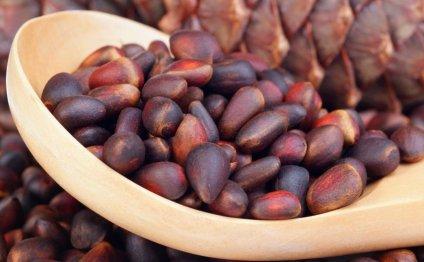 Как хранить кедровые орехи, чтобы они не потеряли свой