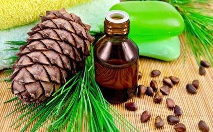 Как сделать настойку кедрового ореха на водке » Отели Владимира