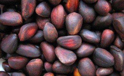 Кедровые орехи – применение; польза и вред, прочие свойства и