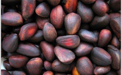 кедрового ореха