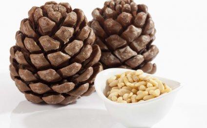 Народная медицина и лечение на дому Кедровые орехи, настойка на