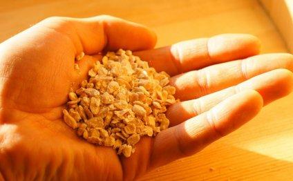 Жмых кедрового ореха, применение